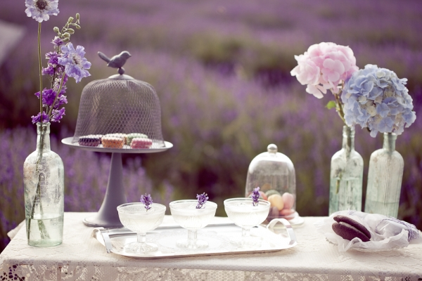 016_Eddie_Judd_photography_lavender_bridal_boho_5761